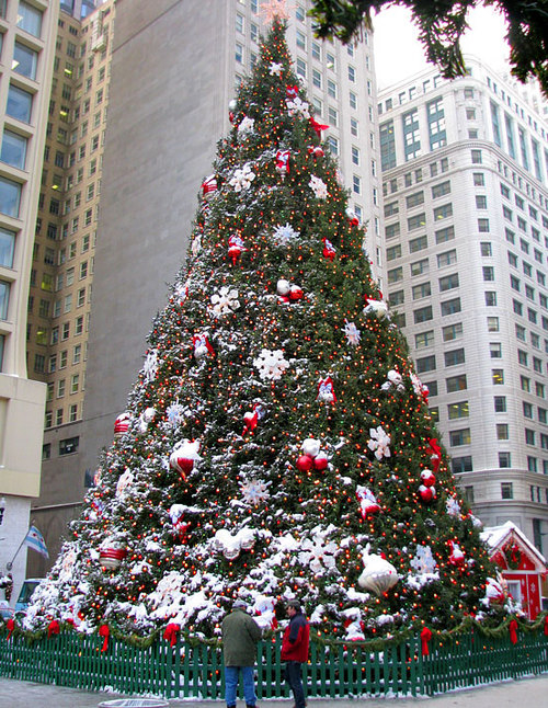 large christmas tree - Large Christmas Tree
