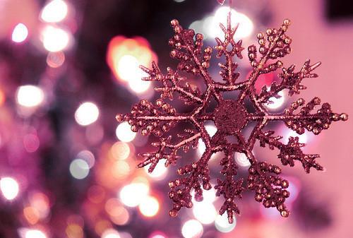 Snowflake Photography Tumblr