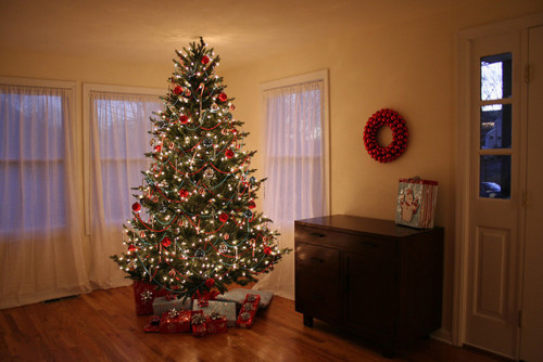 Christmas Tree In Living Room Adorable Living Room Christmas Tree Pictures Photos And Images For . Inspiration Design