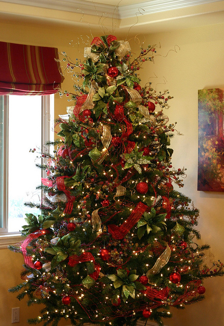 Perfect Christmas Tree Pictures, Photos, and Images for