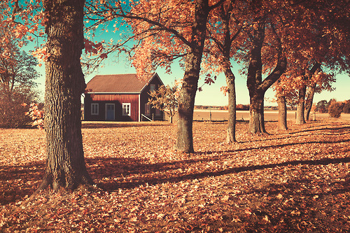 Barn In The Country Pictures, Photos, and Images for Facebook, Tumblr ...