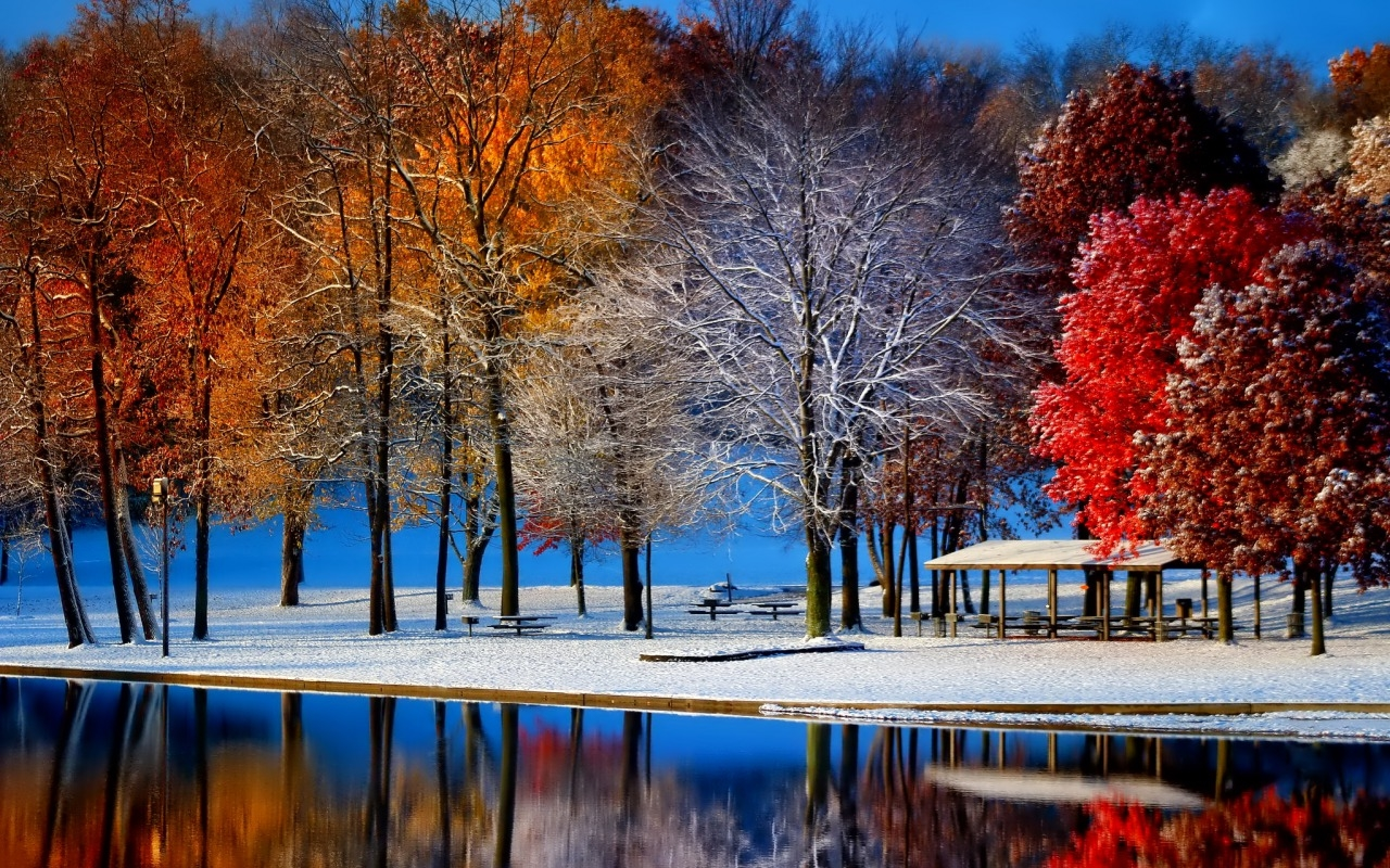 fall snow pictures photos and images for facebook. Black Bedroom Furniture Sets. Home Design Ideas