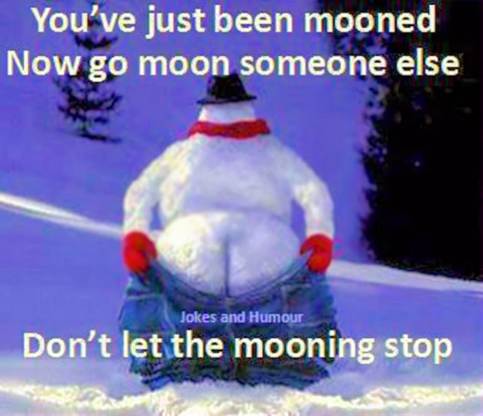 Youve Just Been Mooned