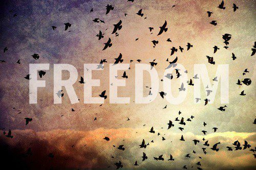Tumblr Backgrounds Quotes Google Search: Freedom Pictures, Photos, And Images For Facebook, Tumblr