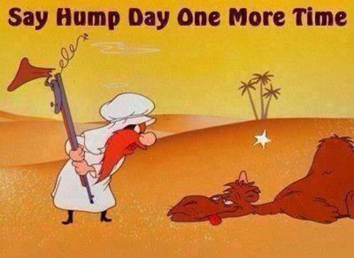 http://www.lovethispic.com/uploaded_images/50759-Hump-Day.jpg