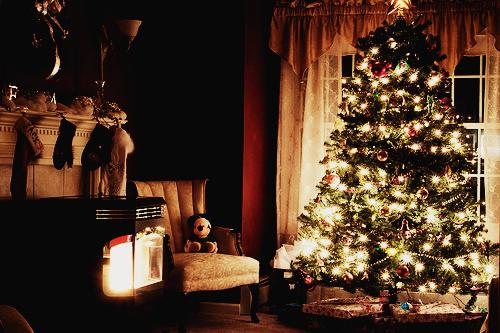 christmas photography tumblr - photo #42