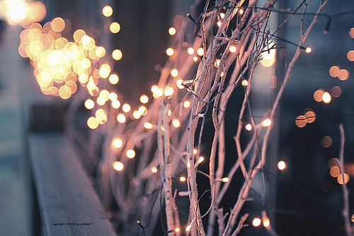 Christmas Lights Quotes