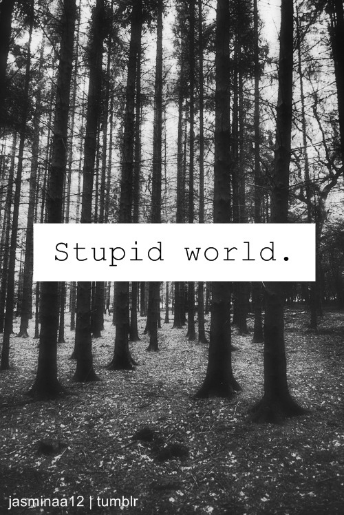Stupid World Pictures, Photos, and Images for Facebook ...