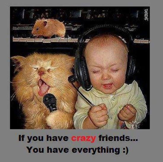 Funny Friend Quotes And Pictures: Crazy Friends Pictures, Photos, And Images For Facebook