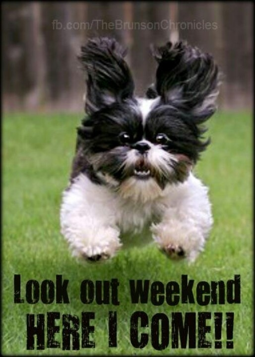 Lookout weekend pictures photos and images for facebook tumblr pinterest and twitter - Week end a nice ...