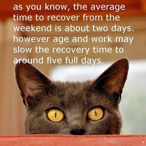 Weekend Recovery Pictures, Photos, and Images for Facebook, Tumblr, Pinterest...