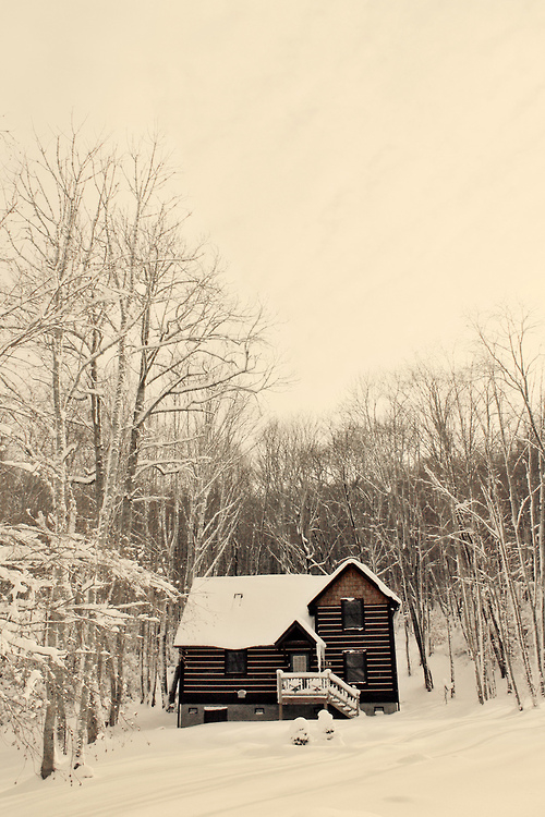 Little House In The Woods Pictures, Photos, and Images for ...