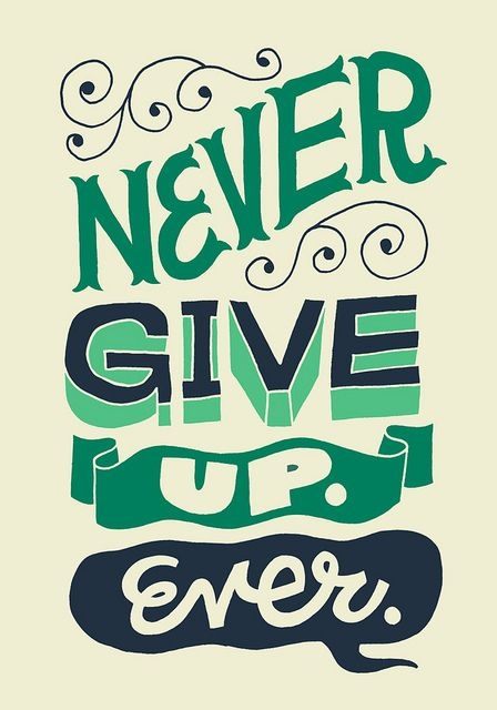 never give up ever pictures photos and images for