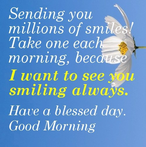 Good Morning Everyone Today I Will : Have a blessed morning pictures photos and images for