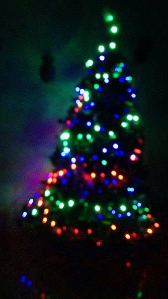 Decorated Christmas Tree In The Dark Pictures, Photos, and Images ...
