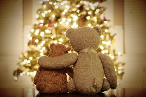 Very Beary Christmas Pictures, Photos, and Images for Facebook ...