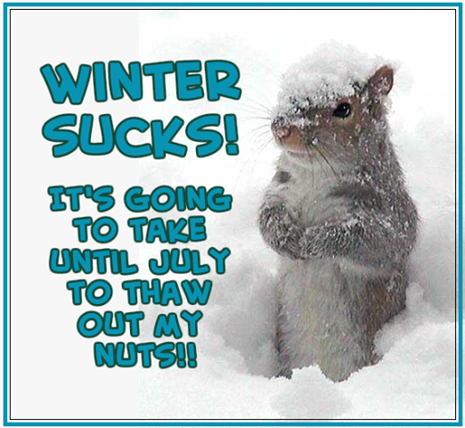 http://www.lovethispic.com/uploaded_images/54750-Winter-Sucks.png