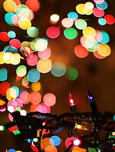 christmas lights bokeh - Blurred Christmas Lights