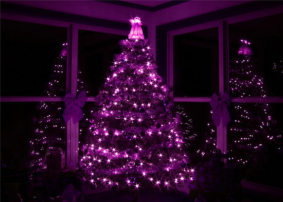 Purple christmas tree pictures photos and images for - Is purple a christmas color ...