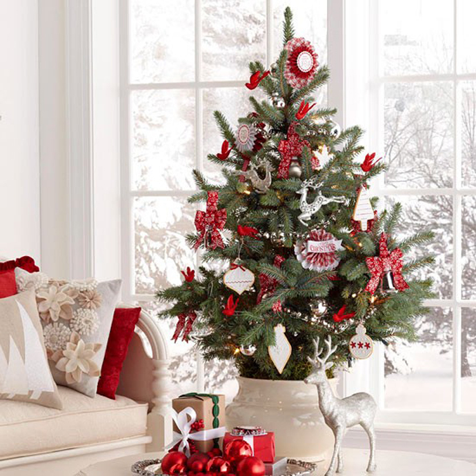 Cute mini christmas tree pictures photos and images for