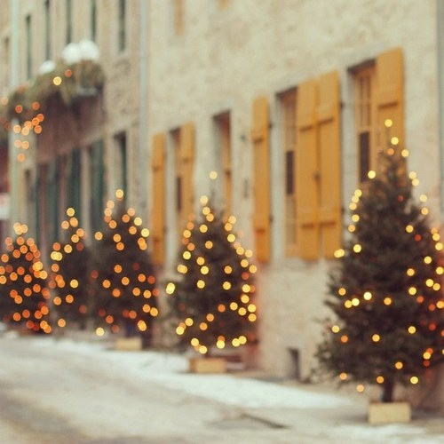Download Christmas Lights Bokeh