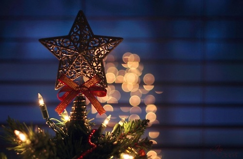 Christmas Tree Star Pictures, Photos, And Images For