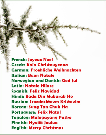 christmas in all languages pictures photos and images