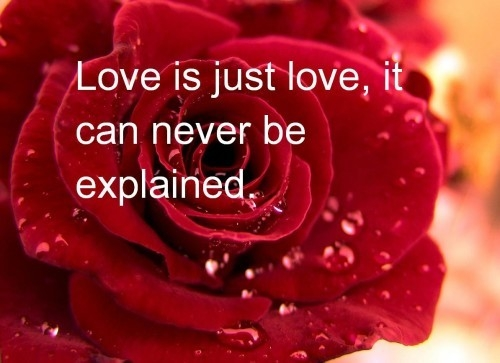 love is just love it can never be explained