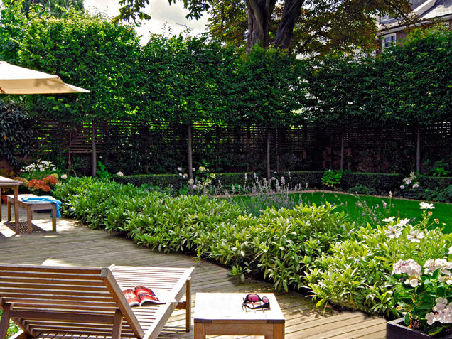 private backyard garden pictures photos and images for