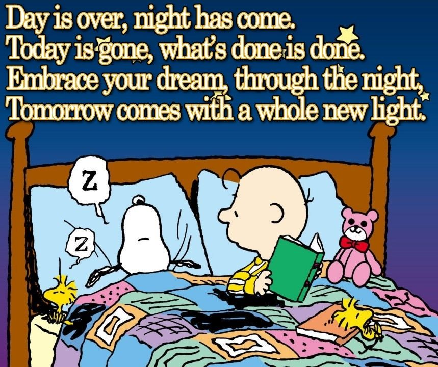 Love charlie brown quotes quotesgram