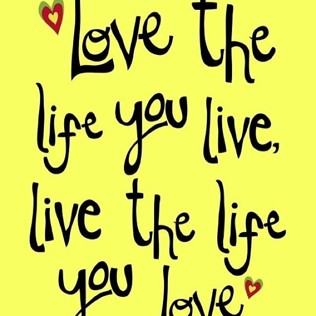 Image result for love the life you live images