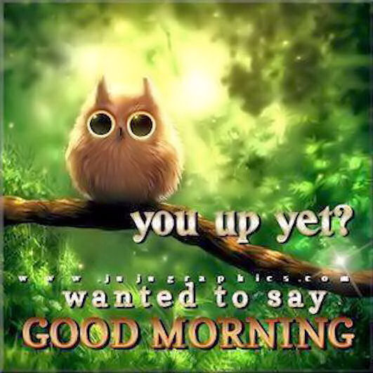 Good Morning Quotes Sweet Morning Quotes : Good morning quotes cute quotesgram