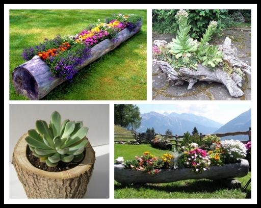 DIY Tree Log Garden Planter Pictures, Photos, and Images ...