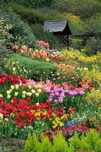 Free Beautiful Garden Wallpapers: Beautiful Spring Garden Pictures, Photos, And Images For