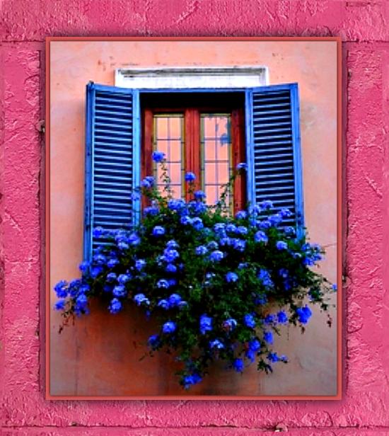 Pretty Window Flower Box
