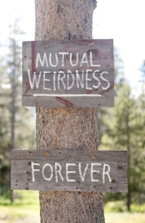 mutual weirdness forever pictures photos and images for