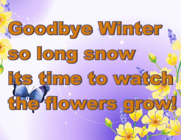 goodbye winter hello s...