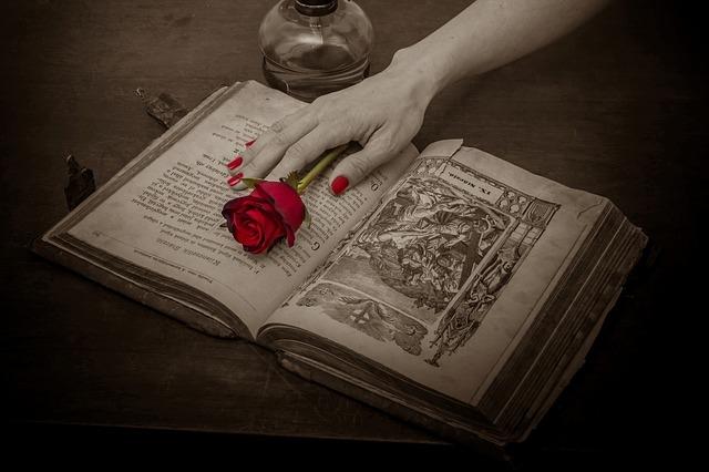 Αποτέλεσμα εικόνας για book in pinterest