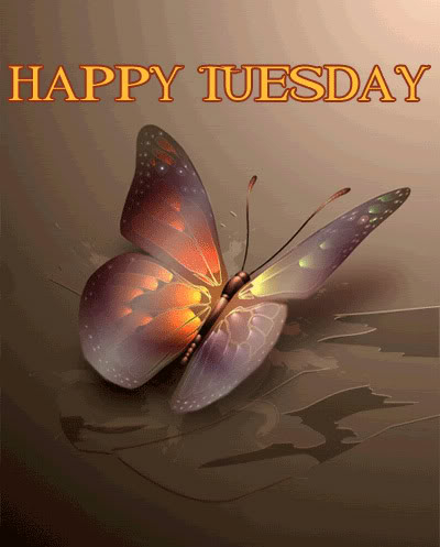 Happy Tuesday Pictures, Photos, and Images for Facebook