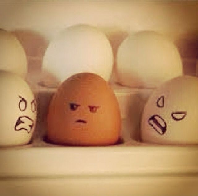 67 Best Trending News Viral Videos Images On Pinterest: Angry Eggs Pictures, Photos, And Images For Facebook