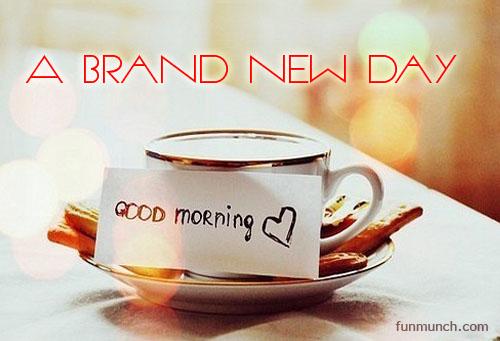 brand-new-day02