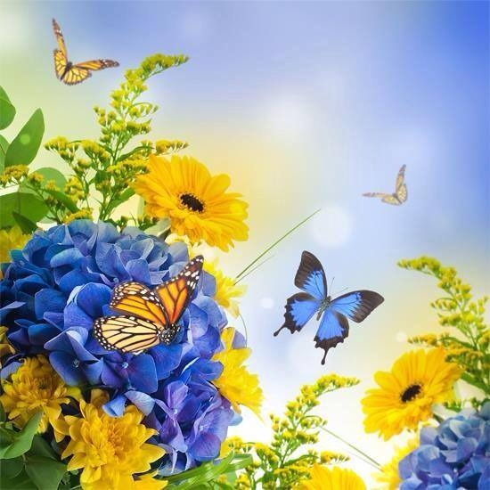Blue yellow flowers butterflies pictures photos and images for blue yellow flowers butterflies mightylinksfo