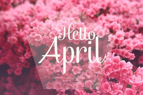 Image Gallery hello april tumblr
