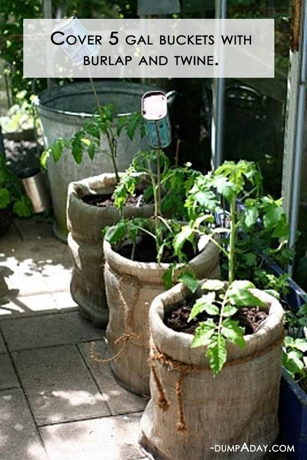Burlap And Twine Bag Garden Pictures Photos and Images for