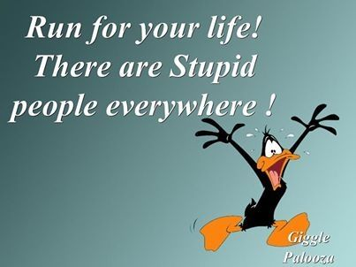 Stupid People Everywhere Pictures Photos And Images For
