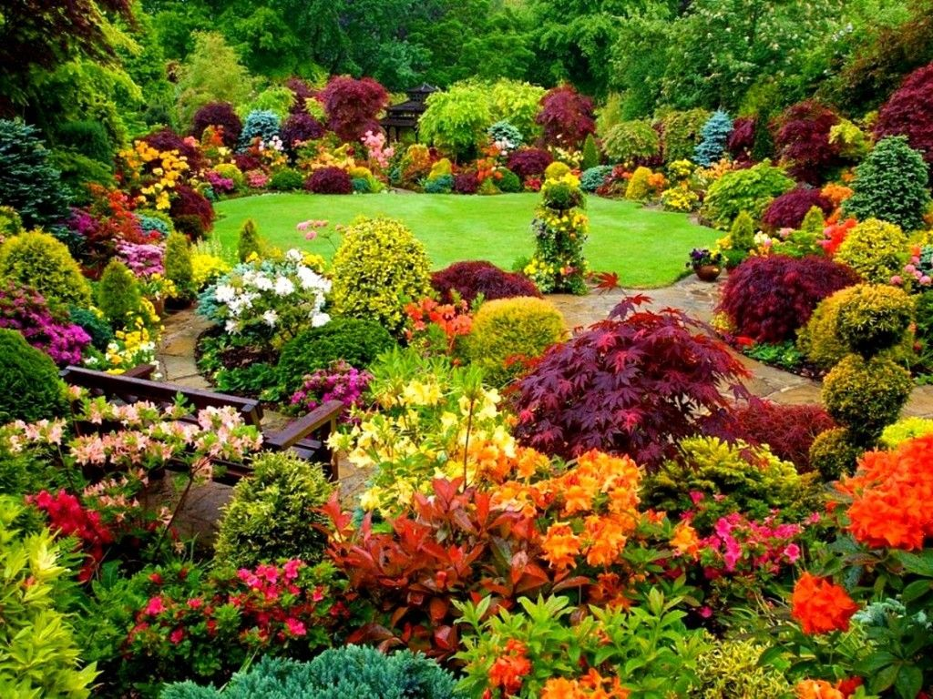 colorful garden pictures photos and images for facebook