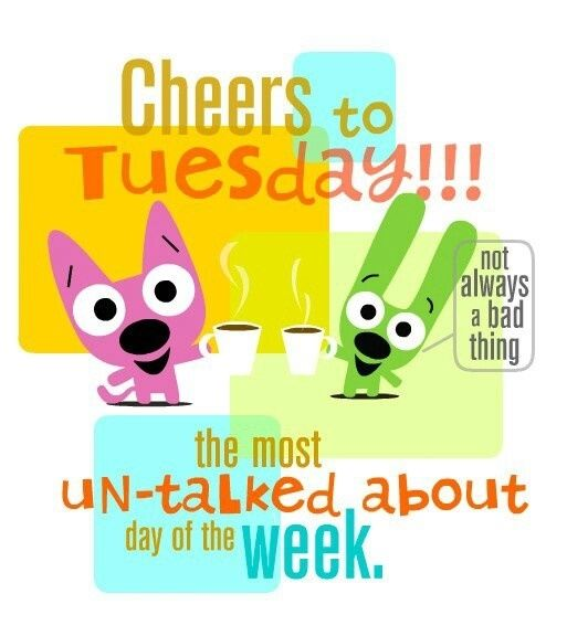 Cheers To Tuesday Pictures Photos And Images For