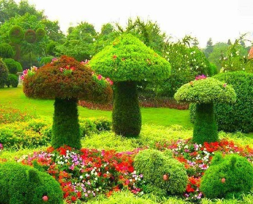Mushroom Garden Art Pictures Photos and Images for Facebook