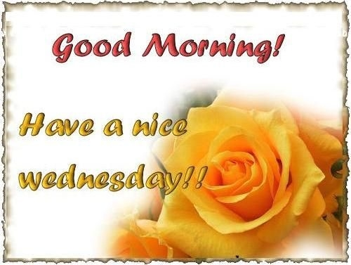Good morning have a nice wednesdya pictures photos and images for good morning have a nice wednesdya m4hsunfo