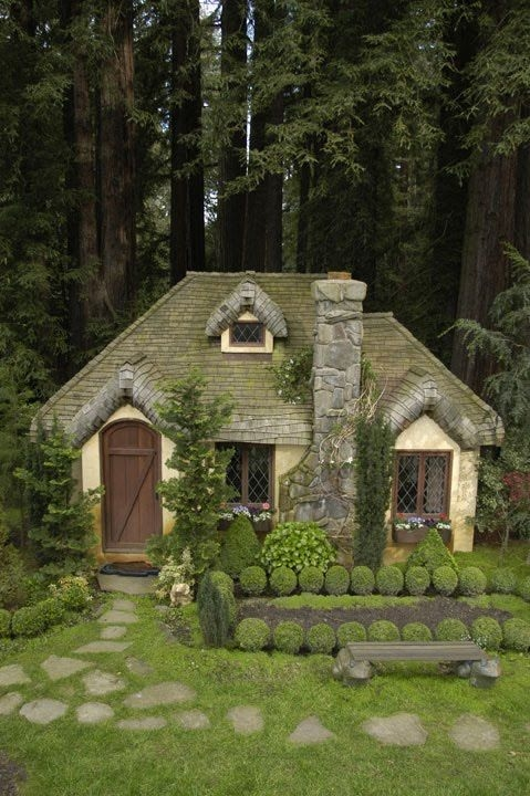 The Perfect Little Forest Cottage Pictures Photos And